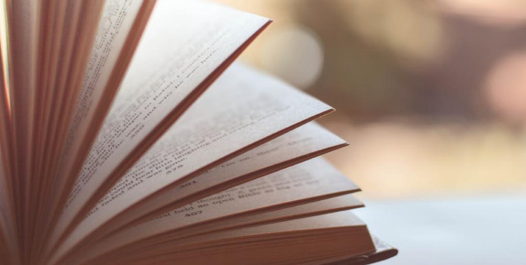 Beitragsbild Vertrauen and Reputation in der Literatur