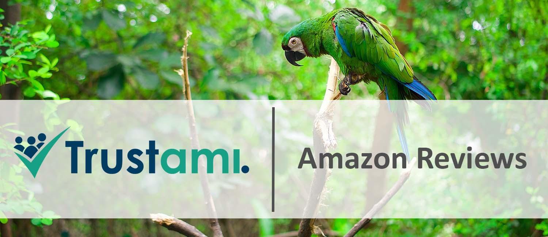 Amazon Reviews sammeln ohne Schummeln